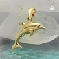 Anhänger Delfin glänzend, 9Kt GOLD