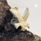 Anhänger Adler bicolor glänzend, 9Kt GOLD