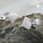Ohrstecker 7mm Ginkgoblatt matt Silber 925