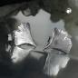 Ohrstecker 9mm Ginkgoblatt glänzend Silber 925